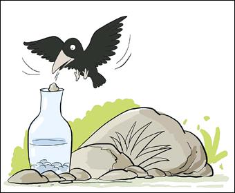 常速 口渴的乌鸦图片