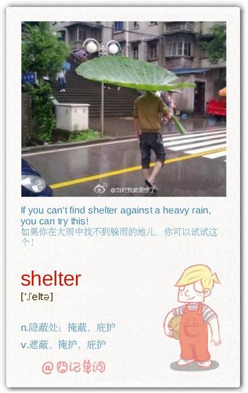 囧记单词:shelter 隐蔽处;庇护,遮蔽,掩护
