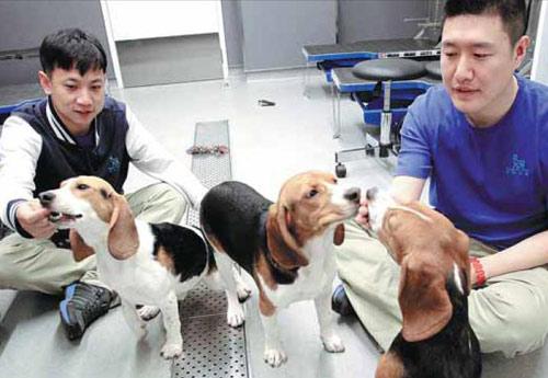 """中国动物实验或实行""""3R原则"""""""