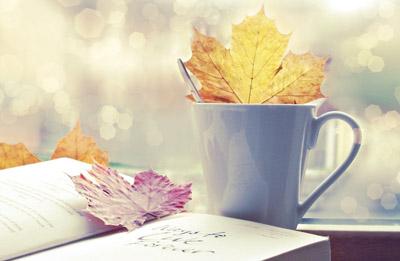 考研英語復習冷靜對待做好五點準備