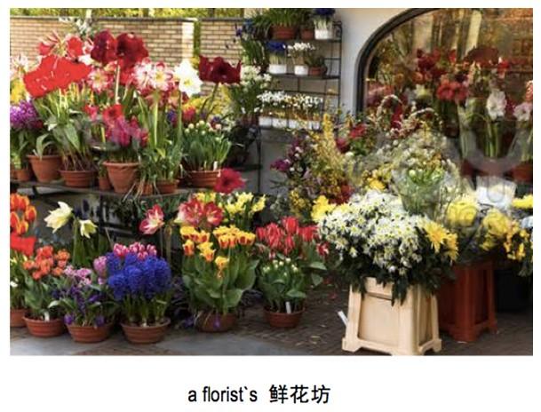 "a florist`s 就是""鲜花店,花坊"""
