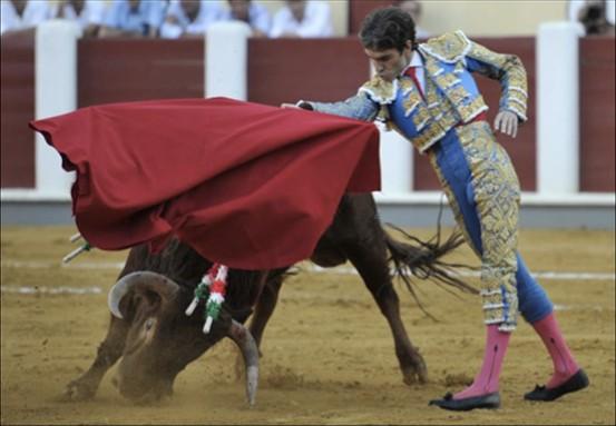 Toreador 西班牙斗牛士
