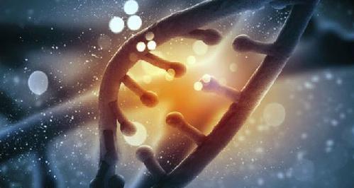 """英将用""""基因剪刀""""技术发展新药"""