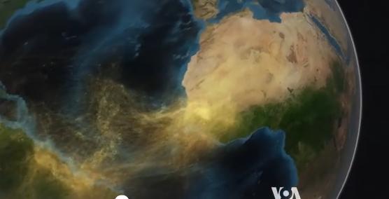 速英语: 撒哈拉沙漠的尘土是怎样滋养亚马逊雨