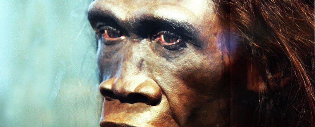 新的证据表明,这些人类祖先在11.7万年前神秘死亡
