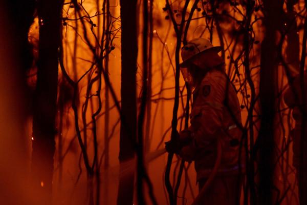 澳大利亞叢林大火死亡人數上升至17人,預計情況將進一步惡化