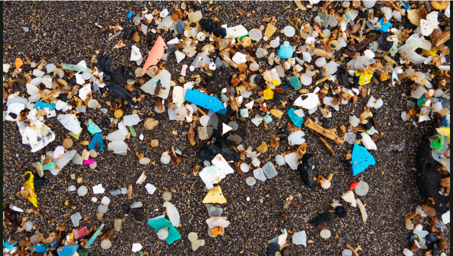 科学家Matthew Shribman对纳米塑料的危险发出了可怕的警告