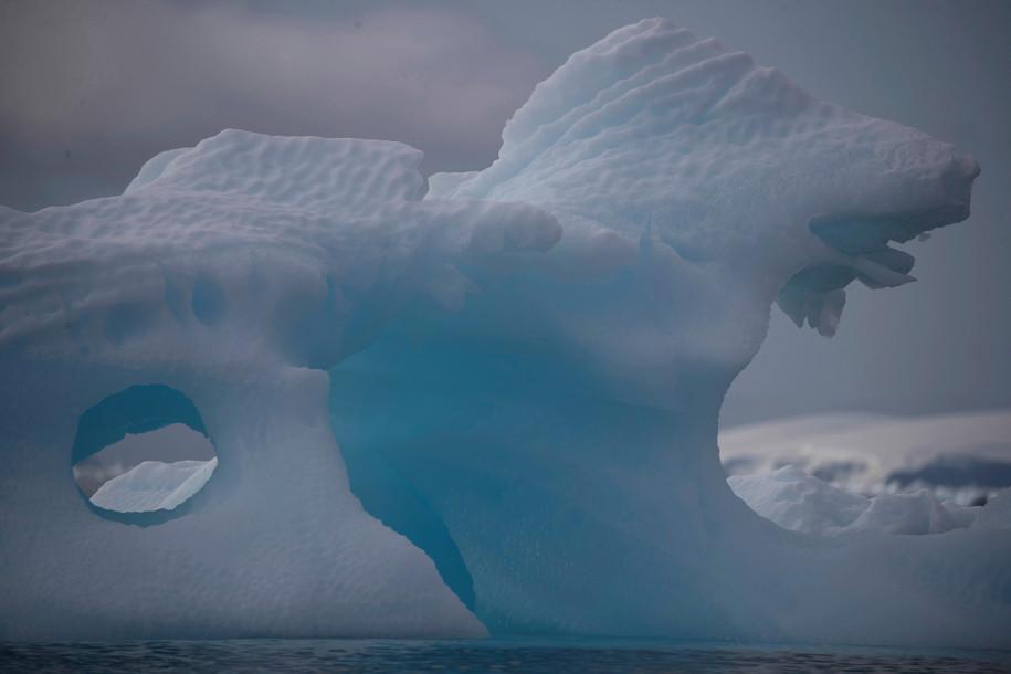如果你要去南极洲,请把帽子和手套留在家里