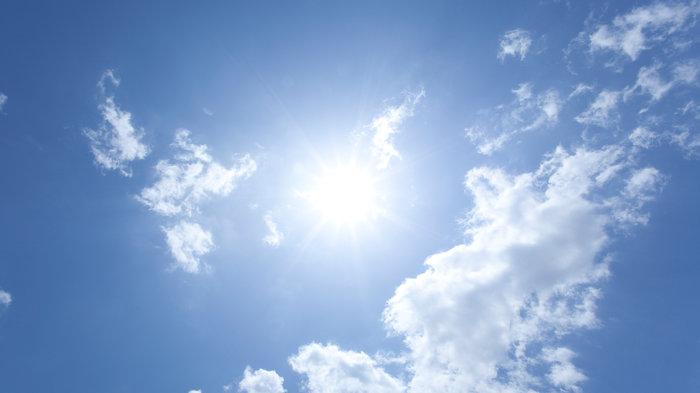陽光能殺死病毒嗎?乘電梯有多危險?