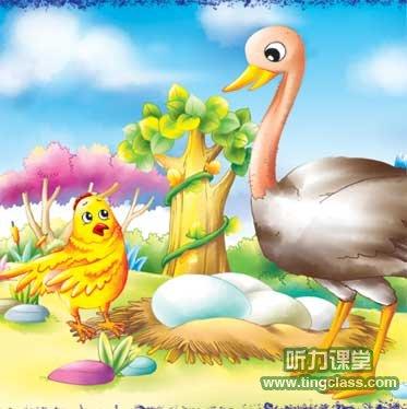 英语童话:花母鸡比蛋 - 听力课堂