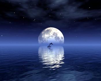玫瑰色的月亮