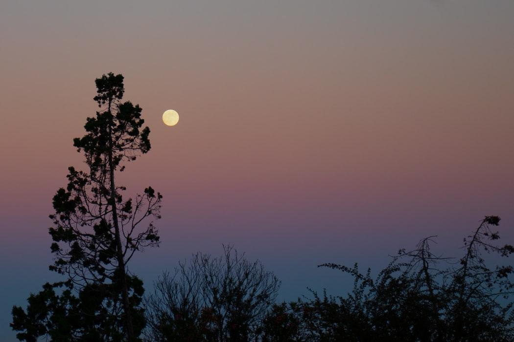 中秋节:边赏月边学月亮短语